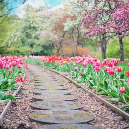 Gardens, Parks & Nature Reserves